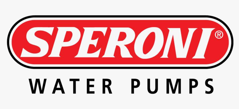 Обслуживание насосов Speroni